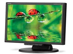 NEC 17 Inch Desktop Monitor  LCD175M-BK with Built-In Speakers