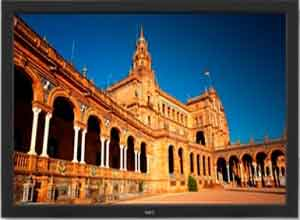 NEC 42 Inch V422 High-Performance Commercial-Grade Large-Screen Display with Speakers